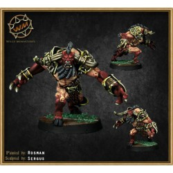 Minotaur Chaos Dwarf